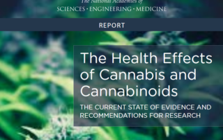 Cannabis Health Effects